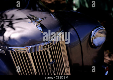 vintage 1951 Ford Prefect classic British car - Stock Image