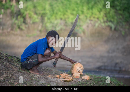 A boy opening a coconut with a large machete, Swagup Village, Upper Sepik, Papua New Guinea - Stock Image