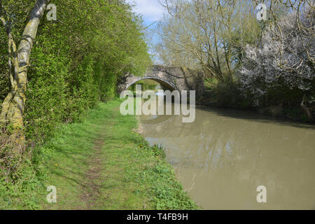 The Oxford Canal meanders through the Warwickshire countryside near the village of Wormleighton - Stock Image