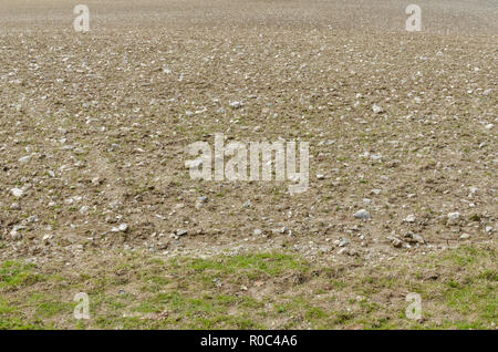 Very stony field - after being ploughed and prepared for planting new crop. - Stock Image