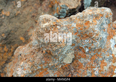 Old Red Sandstone with Quartz and Chert pebbles at Bourke's Luck Potholes, Panorama Route, Kruger, South Africa - Stock Image