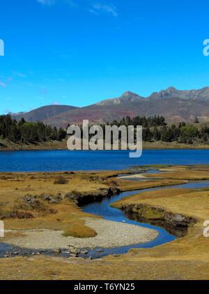 lagoon of Mucubají - Stock Image