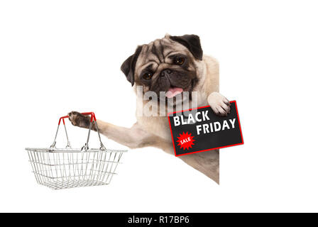 happy smiling pug puppy dog, with wire metal shopping basket and Black Friday Sale sign, behind white banner, isolated - Stock Image