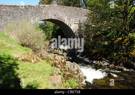 The River Tweed flows under a bridge as it passes by the village of Tweedsmuir, Dumfries & Galloway - Stock Image