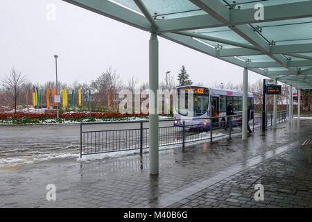 Bus Stops - Broomfield Hospital, Court Road, Broomfield, Chelmsford, Essex, UK - Stock Image