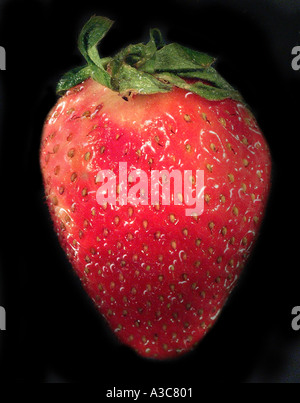 Strawberry - Stock Image