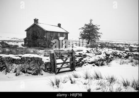 Snow covered Nuns Cross Farm on Dartmoor near Princetown during a winters day with a lone tree and boundary wall - Stock Image