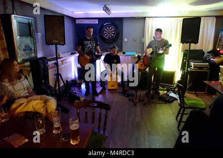 Mild Junk, Pub Rock Band - The Eagle, Braintree, Essex - Stock Image