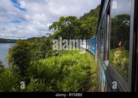 Brazil, Parana, Curitiba, the Serra Verde Express train to the port of Paranagua crosses the last remains of coastal jungle and vertiginous mountains - Stock Image