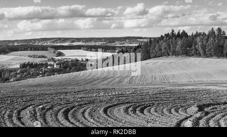 Farmland and forests in black and white landscape. Sown soil close-up. Furrows in sloping field. Spring sky with clouds. Church tower below the hill. - Stock Image