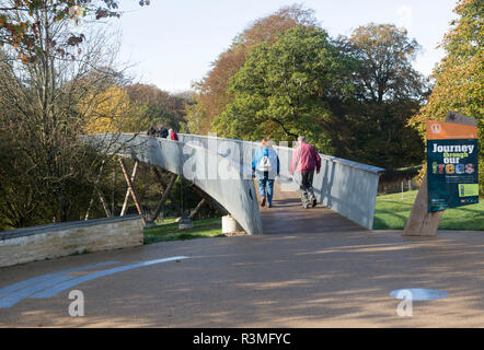 Treetop walkway to Silk Wood, National arboretum, Westonbirt arboretum, Gloucestershire, England, UK - Stock Image