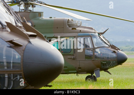 Two Slovenian Eurocopter AS-532AL Cougar helicopters at rest, Airshow Maribor 2008, Slovenia June 15, 2008 - Stock Image