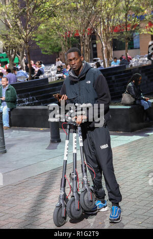 CHARLOTTE, NC, USA-10/31/18:  A man collects electric scooters to re-stock locations in uptown. - Stock Image