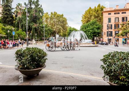 Horse carriages next to parc de Almudaina, placa de la Reina, historic city centre, Ciutat Antiga, Palma de Mallorca, Majorca, B - Stock Image