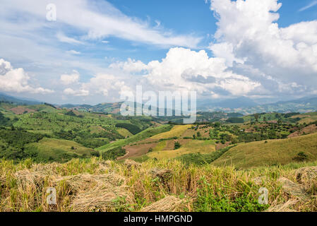 Beautiful landscape of rice farmland on the foothill in northern Thailand - Stock Image