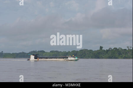 A fast ferry or water bus called 'Yasuni' speeds past the Amzonian rain forest along the Napo River near Coca or - Stock Image