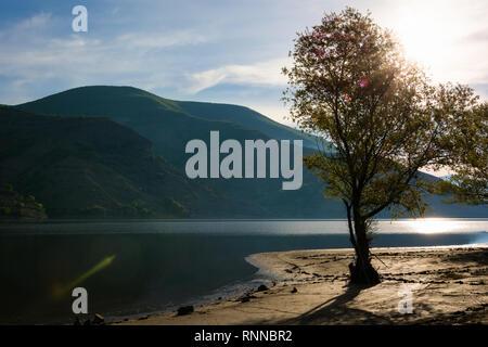 Beautuful Rodopi mountain landscape, Bulgaria. Dam Kardzhali. - Stock Image