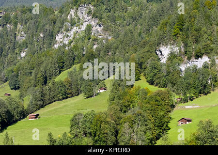 At the foot of the rocky mountain there is a forest area and meadows with several small huts as seen from Lauterbrunnen - Stock Image
