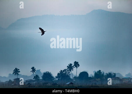 The silhouette of a flying crane over the Shan mountains, Inle lake, Myanmar. - Stock Image