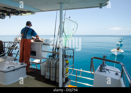 SWAINS REEF, Australia - Looking out the back of a fishing boat on a calm day at Swains Reef, off Gladstone, on - Stock Image