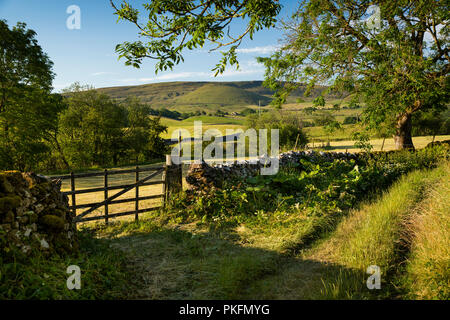 UK, Yorkshire, Wharfedale, Linton in Craven, field gate in green lane, mid-summer - Stock Image