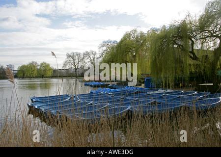 Blue Rowing Boats on the Boating Lake Regents Park London in March - Stock Image