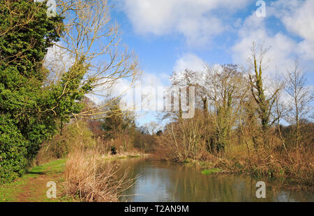 A view of the River Bure and public footpath upstream of Horstead Mill, Norfolk, England, United Kingdom, Europe. - Stock Image