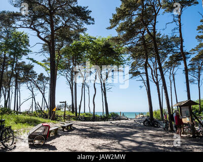 Bicycle parking lot at the beach 'Weststrand' west of Prerow, beach access,  Baltic Sea, peninsula of Fischland - Stock Image