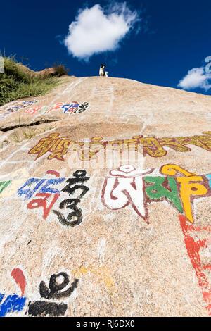 Tibet, Kora um Kloster Sera, bemalte Felsen - Stock Image
