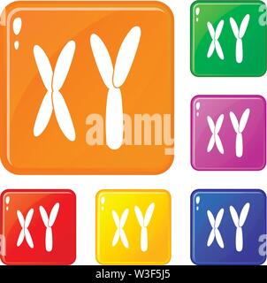 Human chromosomes icons set vector color - Stock Image