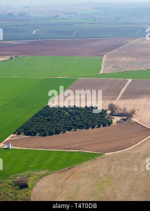 Cultivated land outside Almodovar del Rio, Cordoba Province, Spain. - Stock Image