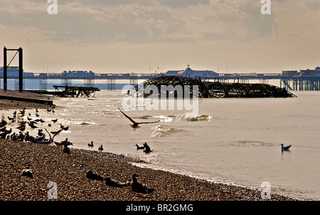 The dilapidated West Pier, Brighton, East Sussex, England - Stock Image
