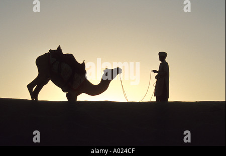Camel and His Master, Pushkar, Thar Desert, Rajasthan, India - Stock Image