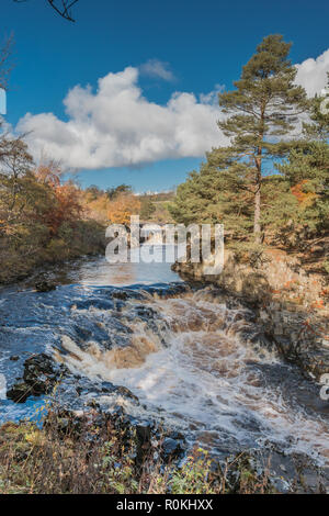 North Pennines AONB Landscape,  Low Force Waterfall, Teesdale with autumn colours and bright sunshine - Stock Image