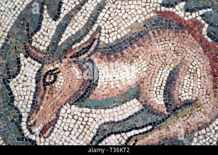 Famous mosaics and mosiac art of animals by Ovoid Portico at Roman Villa del Casale, Piazza Armerina, Sicily, Italy - Stock Image