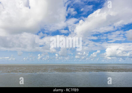 Wadden Sea (Waddenzee), nature in The Netherlands. - Stock Image