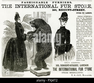 Victorian women wearing fur coats, full length and well fitted seal jacket.     Date: 1886 - Stock Image