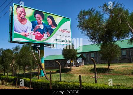 Kenya, Kericho county, Kericho, tea advertising - Stock Image