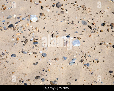 Pebbles and Stones on a Golden Sandy Beach at Great Yarmouth, Norfolk, England, UK - Stock Image