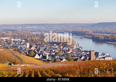 Rüdesheim am Rhein, Hesse, Germany. 7th November 2018. - Stock Image