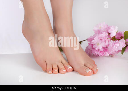 Young female feet with french nails polish in beauty salon and pink flower isolated on white background. Pedicure and spa concept. Close up - Stock Image