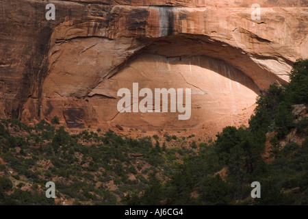 The Great Arch, Zion National Park, Utah, USA - Stock Image