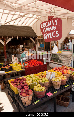 USA, Leesburg in rural Virginia, Heider's vegetable and fruit stand, selling produce and speciality food products - Stock Image