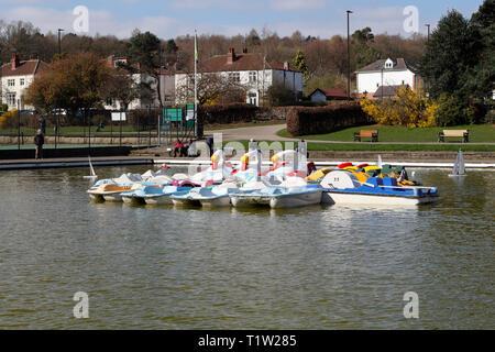 Boating lake, Millhouses Park, Sheffield England - Stock Image