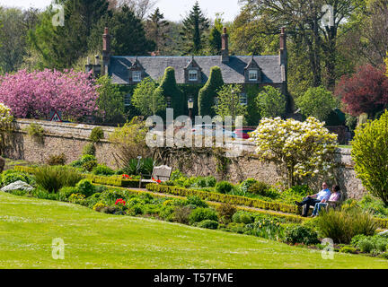 Dirleton Castle, East Lothian, Scotland, United Kingdom, 22nd April 20-19. UK Weather: a very warm sunny day with clear blue sky with a couple sitting on a bench in the castle gardens - Stock Image