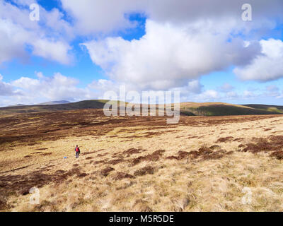 A hiker walking towards Miller Moss from Great Lingy in the Caldbeck Fells in the English Lake District, UK. - Stock Image