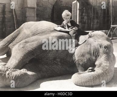 Little boy reading a book on sleeping elephant - Stock Image