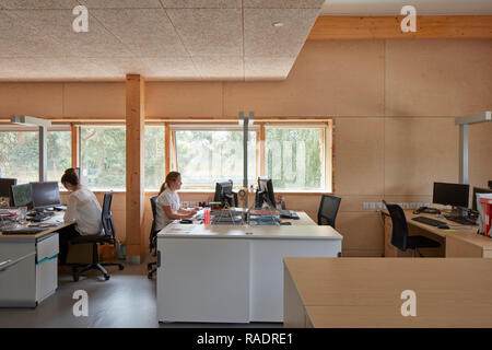 Upper floor office space in use. The Enterprise Centre UEA, Norwich, United Kingdom. Architect: Architype Limited, 2015. - Stock Image