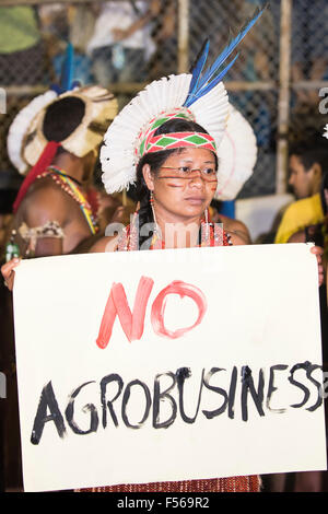 Palmas, Brazil. 27th Oct, 2015. A Pataxo woman holds a banner 'No Agrobusiness', demonstrating against predatory - Stock Image