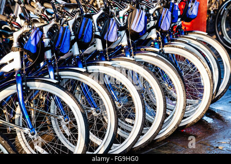 Rental bicycles in a row at a city bike rental business - Stock Image